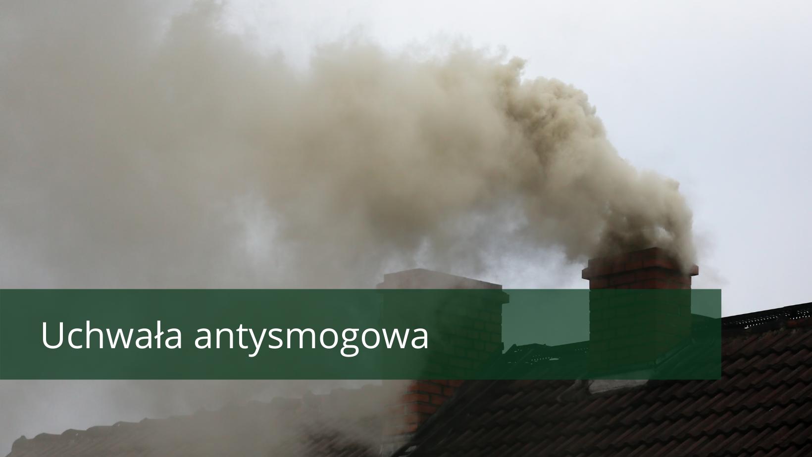 uchwała antysmogowa oraz dym z komina